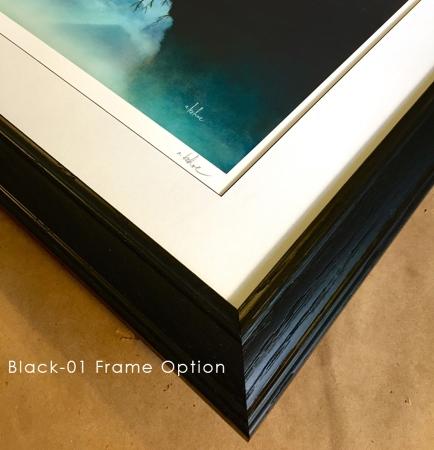 Black 01 Frame Detail